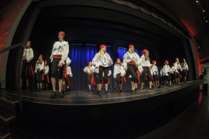 2015-Tanzfestival-10