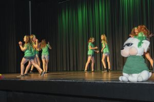 2015-Tanzfestival-32